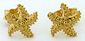 14kt perfect starfish earrings by Seawear.com